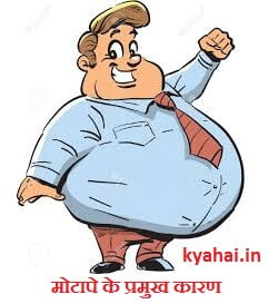 Weight Gain Reasons in Hindi